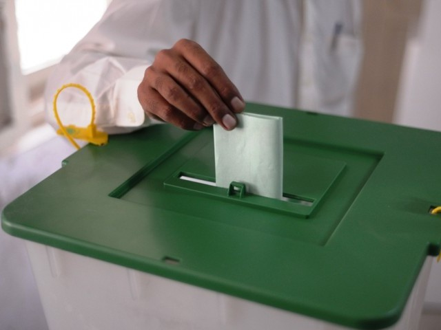 local body elections